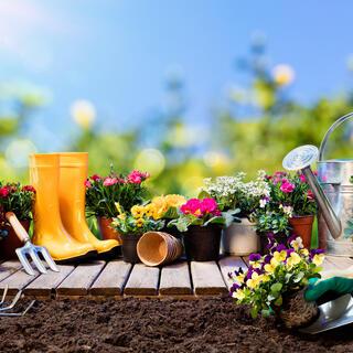 Kertészeti termék